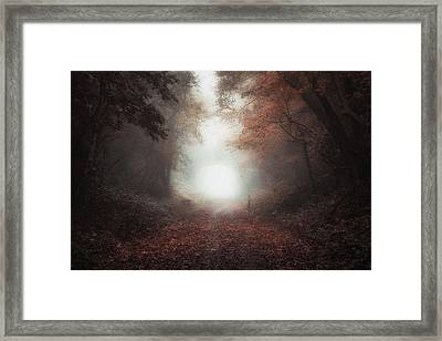 Between Autumn And Winter Framed Print by Chris Fletcher