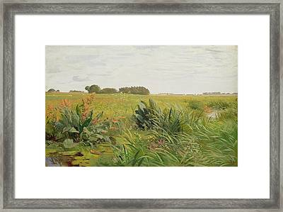 Between Geest And Marsh Framed Print
