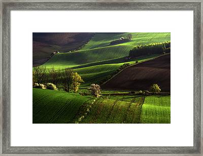 Between Green Waves Framed Print by Jenny Rainbow