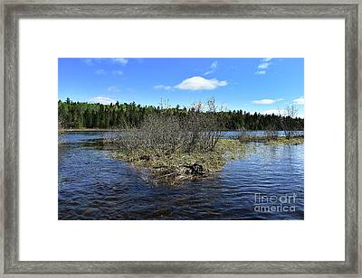Between River And Lake Framed Print
