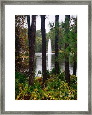 Framed Print featuring the photograph Between The Fountain by Lori Mellen-Pagliaro