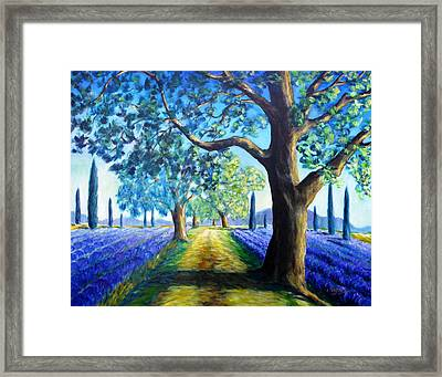 Between The Lavender Fields Framed Print