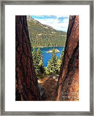 Between The Pines Framed Print