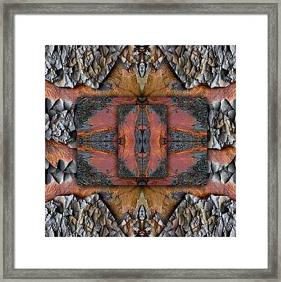 Between Tides Number 1 Square Framed Print by Carol Leigh
