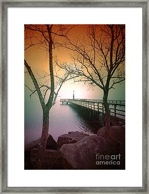 Between Two Trees Framed Print by Tara Turner