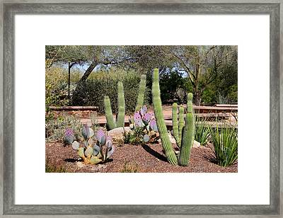 Framed Print featuring the photograph Between Walls by Kathryn Meyer