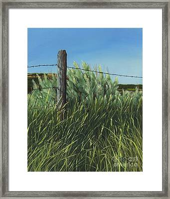 Between You, Me And The Fence Post Framed Print