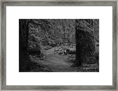 Betwen Two Giants - Black And White Framed Print by Adam Jewell