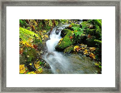 Betwixt The Mossy Rocks Framed Print