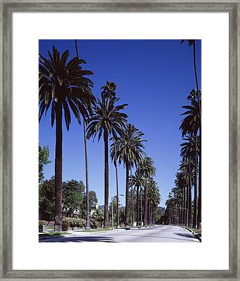 Beverly Hills And The Bel-air Section Framed Print by Everett