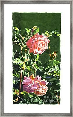Beverly Hills Rose Framed Print by David Lloyd Glover