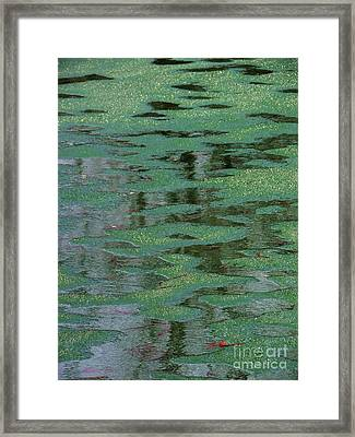 Beverly Hills St. Pats Framed Print by Todd Sherlock