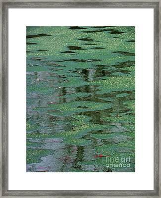 Beverly Hills St. Pats Framed Print