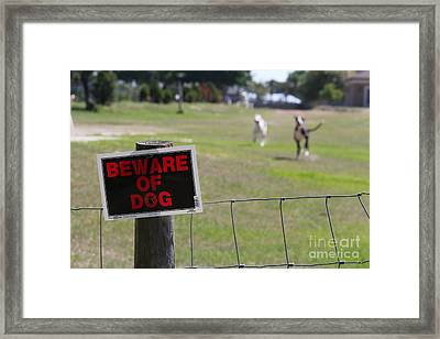 Beware Of Dogs Framed Print