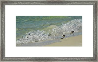 Beware Of The Incoming Wave Framed Print