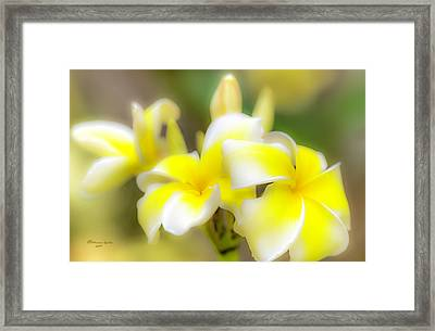 Beyond Beautiful Framed Print