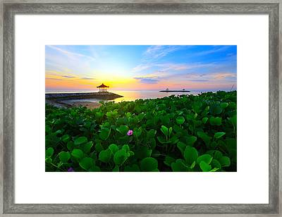 Beyond Beauty  Framed Print