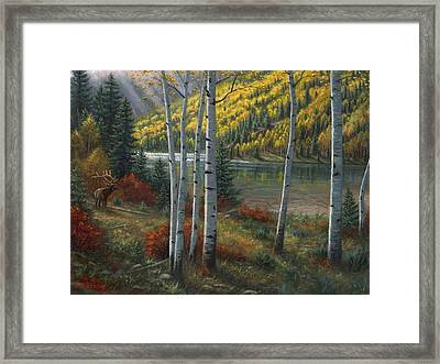 Beyond The Aspens Framed Print by Asa Gochenour
