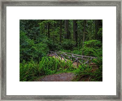 Beyond The Bridge Framed Print by Michele  James