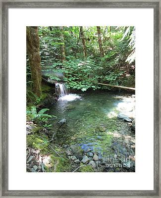 Framed Print featuring the photograph Beyond The End Of The Trail At Limpy Creek by Marie Neder