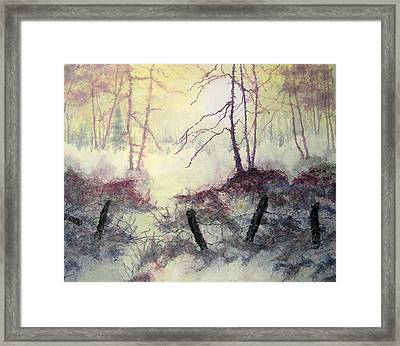 Beyond The Fence Framed Print