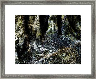 Beyond The Forest Edge Framed Print by Kelly Jade King