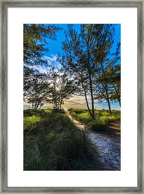 Beyond The Green Grass Framed Print