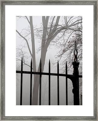 Beyond The Pale Framed Print