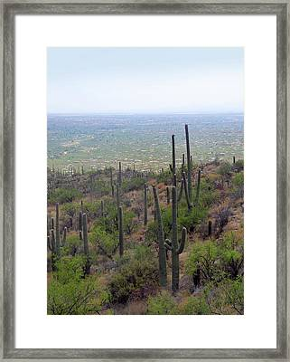 Beyond The Ridge Framed Print