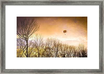 Beyond The Trees Framed Print