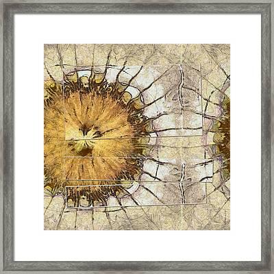 Bible Fantasy Flower  Id 16164-001708-03511 Framed Print