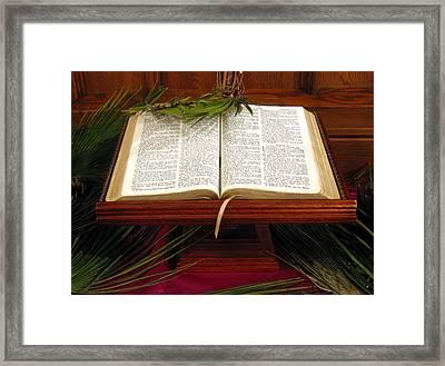 Bible On Palm Sunday Framed Print by Janice Paige Chow