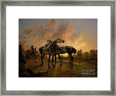 Biche And Mouche Framed Print by MotionAge Designs