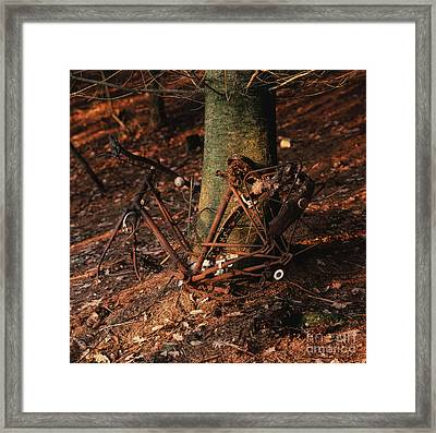 Bicycle Abandoned In A Forest Framed Print