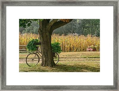Bicycle Planter Framed Print