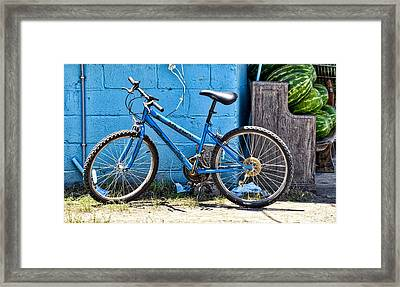 Bicycle With Watermelons Framed Print by Linda Brown
