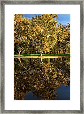 Bidwell Park Reflections Framed Print by James Eddy