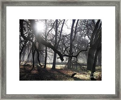 Bidwell Park Sunrise Framed Print by Richard Verkuyl