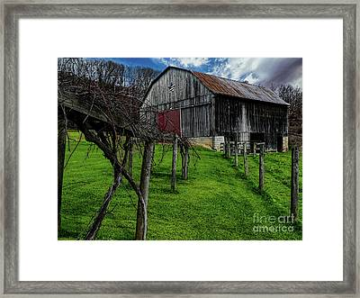 Big Barn Framed Print