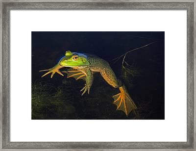 Big Beauford Framed Print