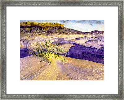 Big Bend Landscape II Framed Print by Myrna Salaun