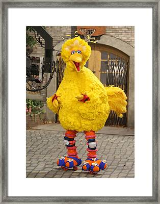 Big Bird Framed Print