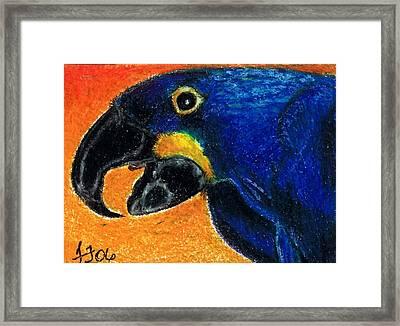 Big Blue Framed Print by Terri Kilpatrick