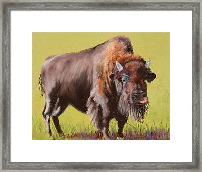 Framed Print featuring the painting Big Boy by Nancy Jolley