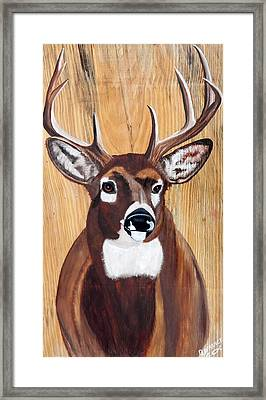 Big Buck On Wood Framed Print