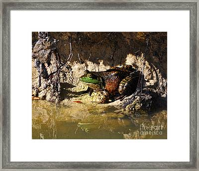 Framed Print featuring the photograph Big Bud by Al Powell Photography USA