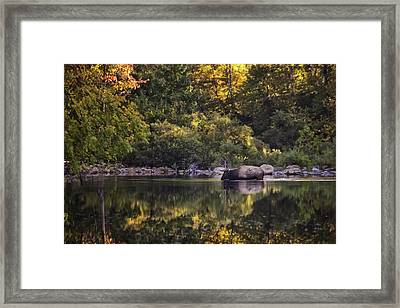 Big Bull In Buffalo National River Fall Color Framed Print