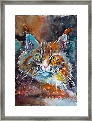 Big Cat Framed Print by Kovacs Anna Brigitta
