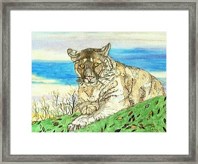 Framed Print featuring the painting Big Cat Watching Out For Prey by Connie Valasco
