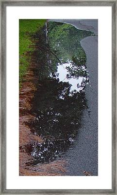 Big Crow Puddle Framed Print by Ron Sylvia